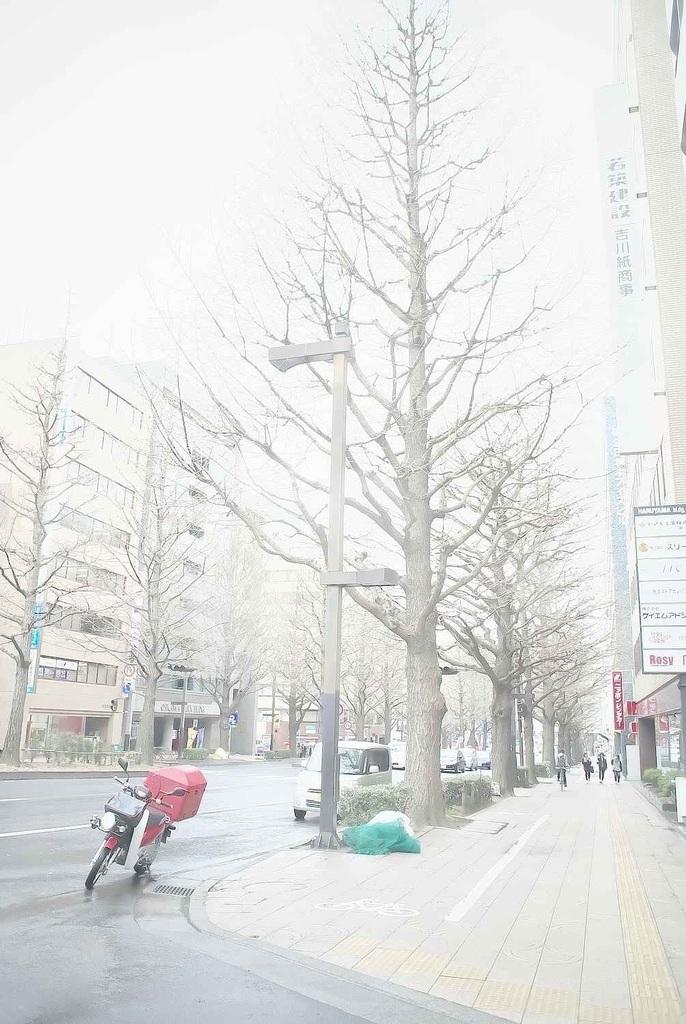 指令写真 047 山田さん 2 DSC_9776.jpg